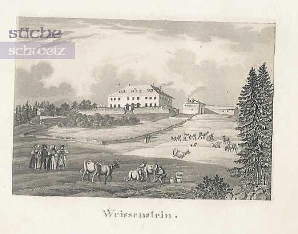 <p>499 Verlag Jeanneret Freres Neuchatel</p>