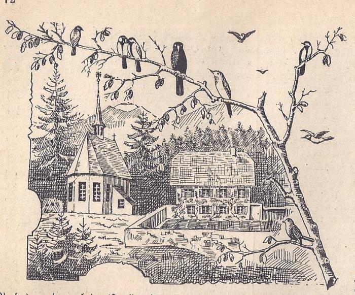 <p>500-1898</p>