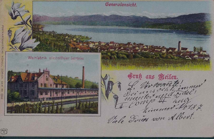 <p>Meilen 2 Bildkarte Karte Nr. 5556 Weinfabrik + Generalansicht ,Top Zustand , 11.5.1903</p>